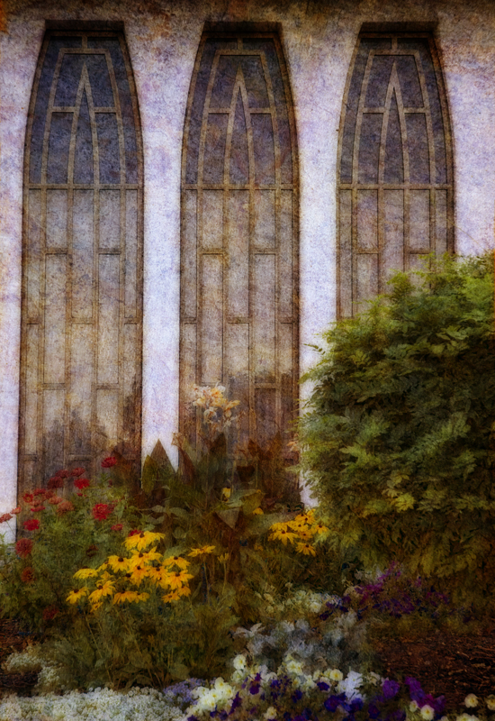 Provo Window and Flowers