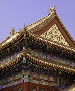Forbidden City Roofs 2